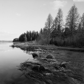 Mississippi Headwaters at Lake Itasca